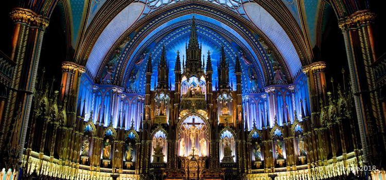 Notre-Dame Basilica2