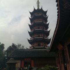 The Pharmacist Stupa User Photo