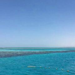 Giftun Islands用戶圖片