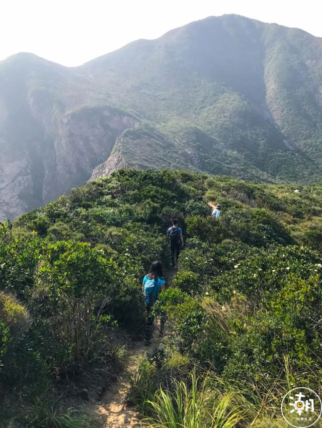 膽小者勿進!讓廣州人又愛又怕的絕世美景,竟藏在香港的懸崖邊!