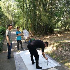 Xishuangbanna Tropical Botanical Garden, Chinese Academy of Sciences User Photo