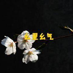 Nishi Park User Photo