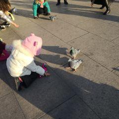 소피아광장 여행 사진
