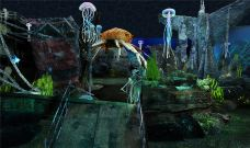 深海乐园-聊城-用户1