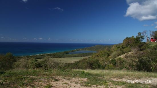 Caribbean Fly Fishing Co Travel Guidebook Must Visit