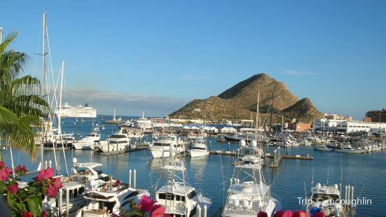 Marina Cabo San Lucas