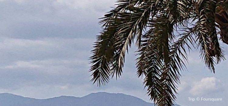 Arenal Beach2