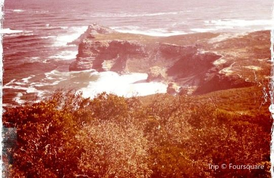 Cape Point1