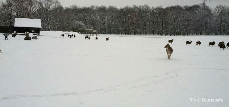 Wildpark Leipzig