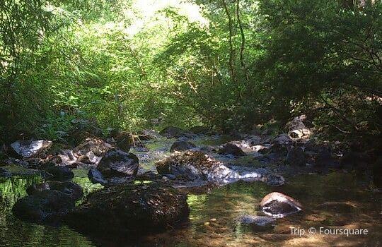 Reserva Nacional Nonguen3