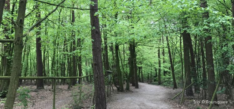 Tierpark Sommerhausen3
