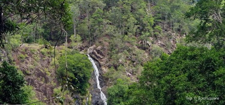 Kondalilla Falls3
