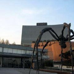 麗水市美術館用戶圖片