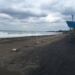 Samyang Black Sand Beach User Photo