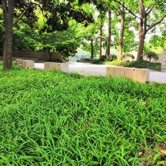 Fangfengshan User Photo
