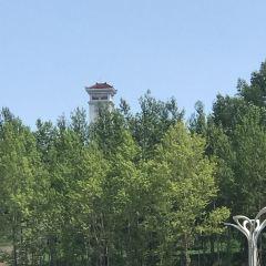 룽징 시 여행 사진