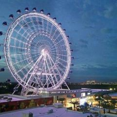 The Wheel at ICON Park User Photo