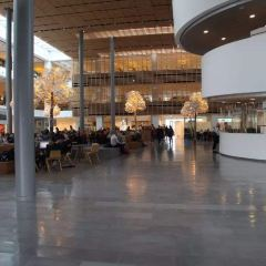 Det Kongelige Biblioteks Have User Photo