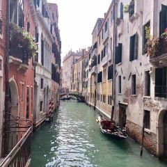 MM Venezia User Photo