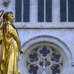 聖母升天大教堂用戶圖片