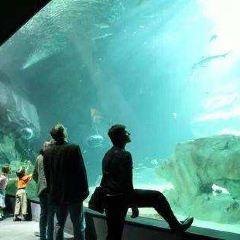 Aquarium de Paris User Photo