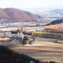 裕龍灣旅遊風景區用戶圖片
