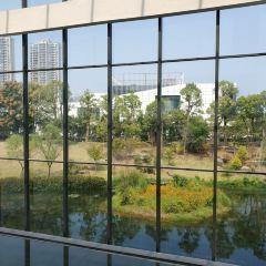 Lizijian Gallery User Photo