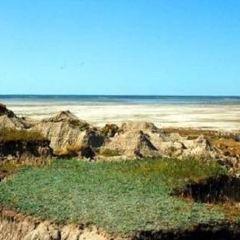 國家級東溝濕地狩獵區用戶圖片