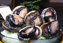 奥克兰美食图片-黑边鲍鱼