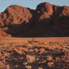 Namib-Naukluft National Park User Photo