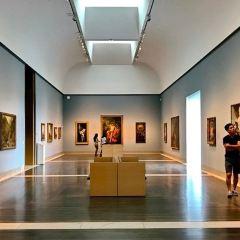 휴스턴 미술관 여행 사진