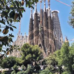Vinalium Sagrada Familia User Photo