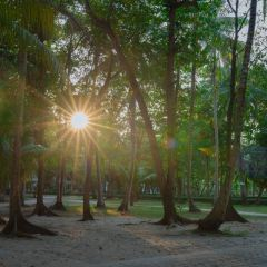 Khao Phra Thaeo National Park User Photo