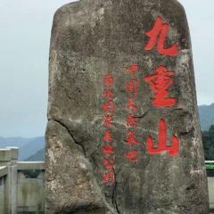 九重山國家森林公園用戶圖片
