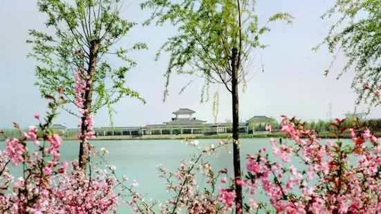 Shagou Lake Agricultural Demostration Park