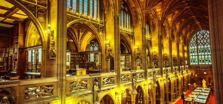 욘 라이랜즈 도서관