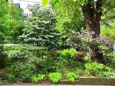 Harris Garden