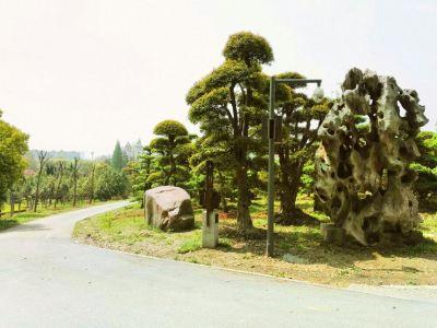 Ma'anshan Forest Park