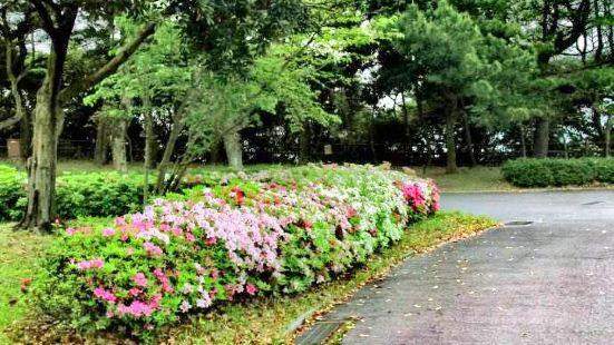 鹿兒島鮮花公園