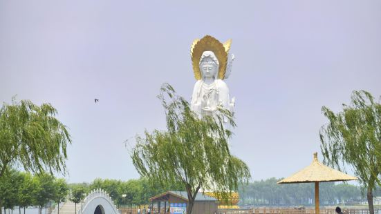 Lotus Grand View Garden
