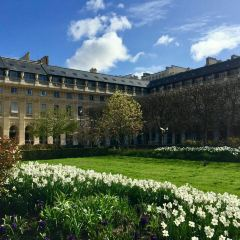 皇宮花園 用戶圖片