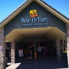 Wai-O-Tapu Thermal Wonderland User Photo