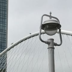 畢爾巴鄂步行橋用戶圖片