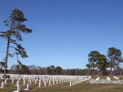 United States Government: Calverton National Cemetery