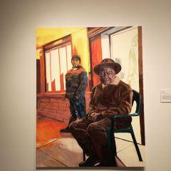 丹佛藝術博物館用戶圖片