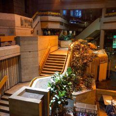 Universite du Quebec a Montreal (UQAM)用戶圖片