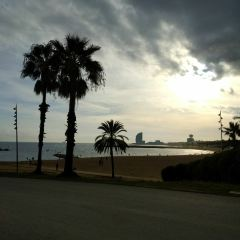 Barceloneta Beach User Photo
