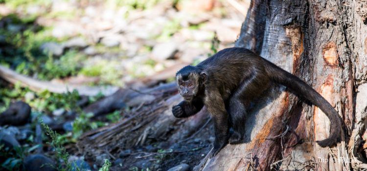 Willowbank Wildlife Reserve2