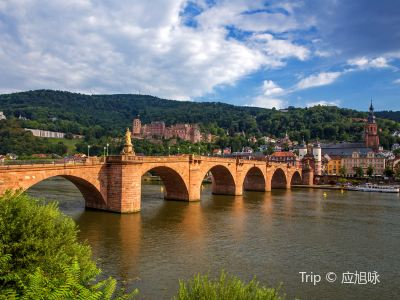 Heidelberg Old Bridge