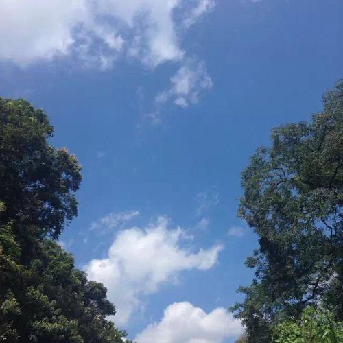 虎伯寮自然保護區